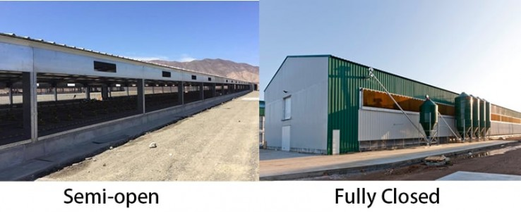 Different-between-Semi-open-and-fully-closed-Steel-Structure-Farm-Building